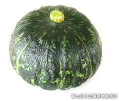 20110525かぼちゃ.jpg