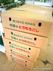 20110603もろこし箱.jpg