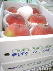 20110714夢しずく.jpg