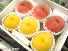 20110820川中島黄金桃.jpg