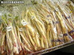 20120331うど.jpg