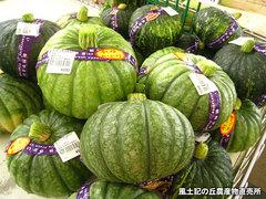 20120528かぼちゃ.jpg