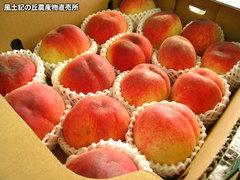 20120624桃フルコン.jpg