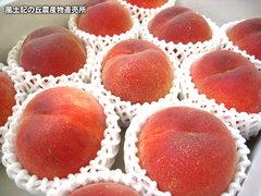 20120704日川.jpg