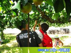 20120812梨狩り.jpg