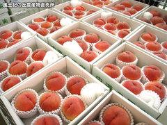 20120827桃売り場.jpg