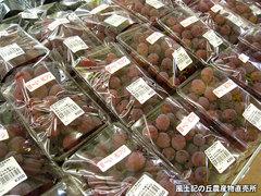 20120909紅富士.jpg