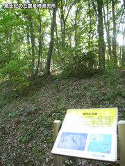 20121012公園3.jpg