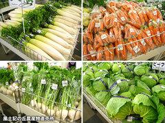 20121027野菜一覧1.jpg