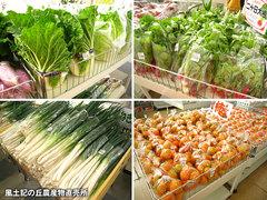 20121027野菜一覧2.jpg
