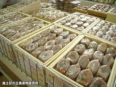 20121130枯露柿.jpg