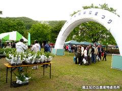 20130421緑化まつり1.jpg