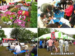 20130421緑化まつり2.jpg