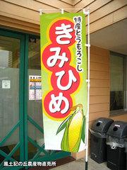 20130621ノボリ.jpg