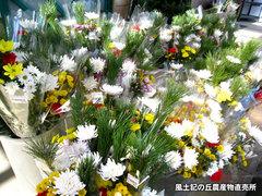 20131225花.jpg