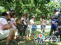 2013フルーツ祭り5.jpg