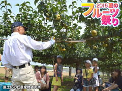 20160811fruitsfair004.jpg
