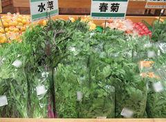 20201112水菜春菊.jpg
