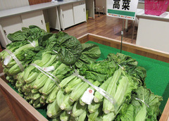 20201220高菜.jpg