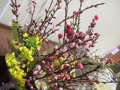 20210324桃な花.jpg