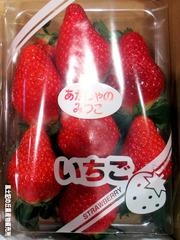 あかしゃのみつこ0113.jpg