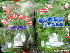 ちぢみほうれん草0106.jpg