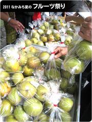 フルーツ祭り-なし.jpg