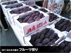 フルーツ祭り-ぶどう.jpg