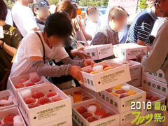フルーツ祭りブログ2.jpg