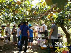 フルーツ祭りブログ6.jpg