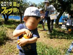 フルーツ祭りブログ7.jpg
