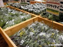 菜花類.jpg