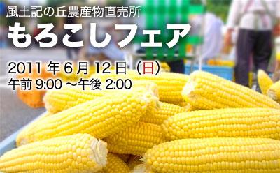 morokoshifair2.jpg
